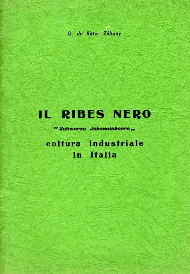Il Ribes Nero. Coltuta industriale in italia.